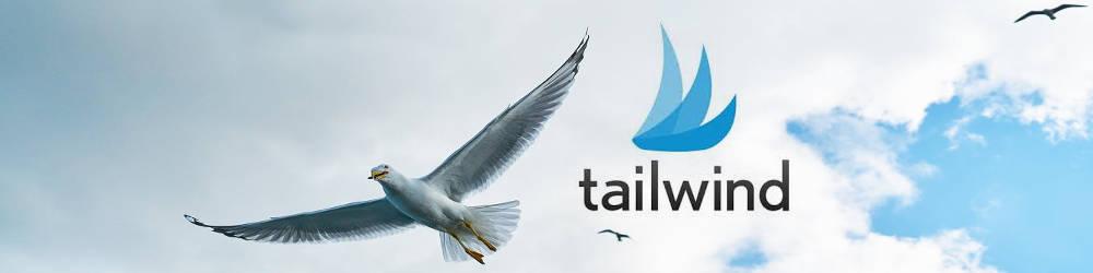 Tailwind: Media.net results